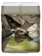 Galapagos Giant Tortoise In Pond Behind Another Duvet Cover