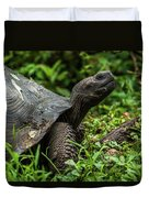 Galapagos Giant Tortoise In Profile In Woods Duvet Cover