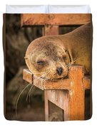Galapagos Sea Lion Sleeping On Wooden Bench Duvet Cover