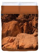 Gambels Quail Valley Of Fire Duvet Cover