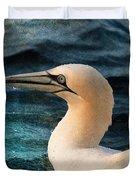 Gannet Swim Duvet Cover