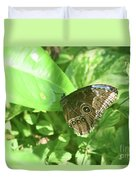 Garden With A Blue Morpho Butterfly With Wings Closed Duvet Cover