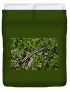 Garter Snake Duvet Cover by Douglas Barnett