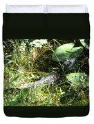 Gator Baby Duvet Cover