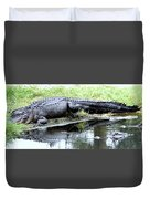 Gator On The Shore Duvet Cover