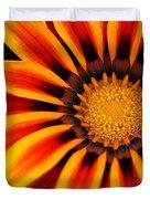 Gazania R Duvet Cover