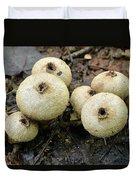 Gem-studded Puffball Mushroom Duvet Cover