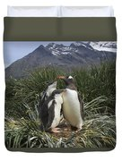 Gentoo Penguin And Young Chicks Duvet Cover by Suzi Eszterhas