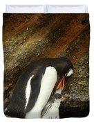 Gentoo Penguin Feeding Chicks Duvet Cover