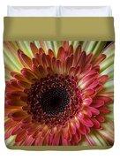 Gerbera Beauty Duvet Cover
