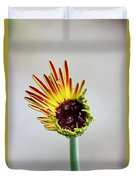 Gerbera Beginnings Duvet Cover