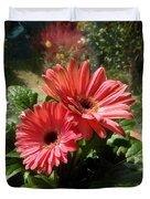 Gerberas In Coral Pink 2 Duvet Cover