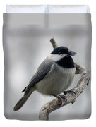 Getting Ready To Crack - Black-capped Chickadee Duvet Cover