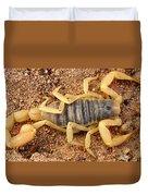 Giant Hairy Scorpion Duvet Cover