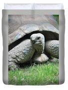 Giant Land Turtle Duvet Cover