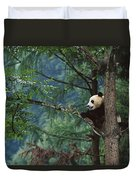 Giant Panda Ailuropoda Melanoleuca Duvet Cover by Cyril Ruoso