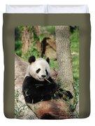 Giant Panda Bear Lounging On Against Tree Trunk Duvet Cover