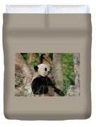 Giant Panda Bear Sitting Up Leaning Against A Tree Duvet Cover