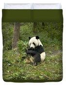 Giant Panda Eating Bamboo Duvet Cover