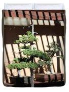 Giant Redwood Bonsai  Duvet Cover