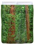 Giant Sequoias Sequoiadendron Gigantium Yosemite Np Ca Duvet Cover