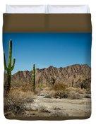 Gila Mountains And Sonoran Desert Duvet Cover