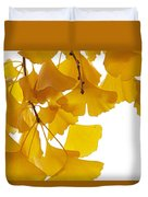 Ginkgo Ginkgo Biloba Leaves In Autumn Duvet Cover