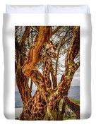 Giraffe Camouflage Duvet Cover