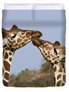 Giraffe Kisses Duvet Cover