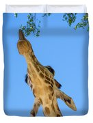 Giraffe Lunch Duvet Cover