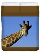 Giraffe With Oxpeckers Duvet Cover