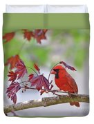 Give Me Shelter - Male Cardinal Duvet Cover by Kerri Farley