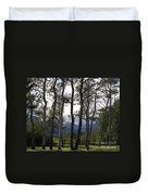 Glacier National Park Green Trees Mountains Duvet Cover