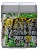 Glacier Np Moss Duvet Cover