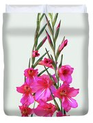 Gladioli Byzantinus In Love Duvet Cover