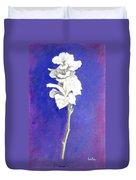 Gladiolus 1 Duvet Cover