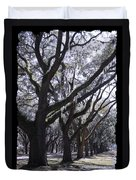Glorious Live Oaks With Framing Duvet Cover