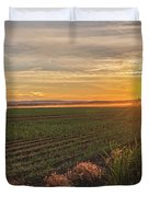 Glowing Fields Of Pine Island Duvet Cover