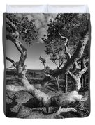 Gnarled Pine Tree At The Coast Duvet Cover