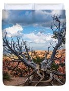 Gnarly - Bryce Canyon Duvet Cover
