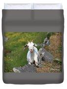 Goat Posing Duvet Cover