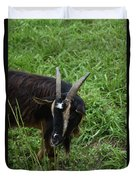 Goat With Long Horns In A Grass Field Duvet Cover