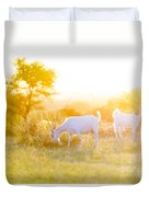 Goats Grazing In Field Duvet Cover