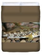 Goby Fish Duvet Cover