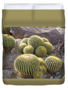 Golden Barrel Cactus Duvet Cover