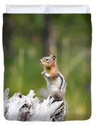 Golden Mantled Ground Squirrel Duvet Cover