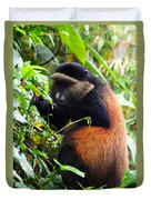 Golden Monkey II Duvet Cover