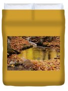 Golden Reflections In A Stream On The Blanchet Trail Gatineau Pa Duvet Cover