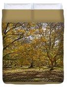 Golden Walnut Orchard II Duvet Cover