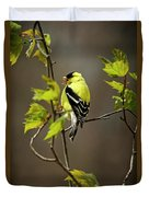 Goldfinch Suspended In Song Duvet Cover